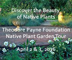 Annual Theodore Payne Native Plant Garden Tour | April...