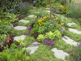 Fuquay Varina Garden Club- August 15th, 2013 Garden...