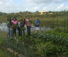 4-H Gardening Workshop