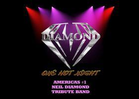 NEIL DIAMOND TRIBUTE: DIAMOND - ONE HOT NIGHT