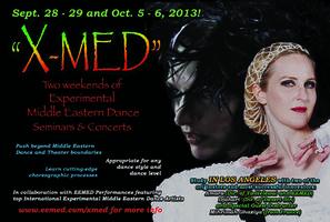X-MED Workshop: LA 2013