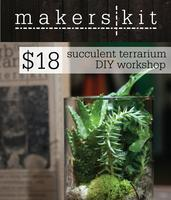 Modern Mouse DIY Terrarium Making Workshop