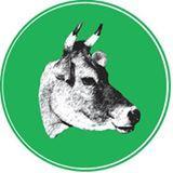 Brookford Farm logo