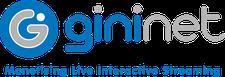 Gininet logo