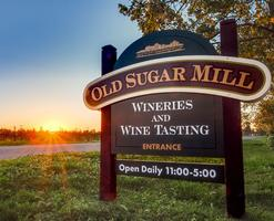 Walking Wine Tours - 1st Saturdays at Old Sugar Mill...
