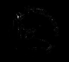 Association Massiliazoom logo
