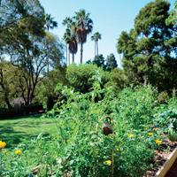 Whole Foods Market 90210 - Greystone Demo Garden -...