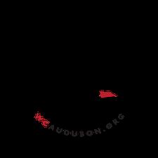 Western Cuyahoga Audubon logo