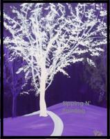 Sip N' Paint Purple Shadows Tues June 5th 6:00pm
