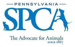 Registration for PSPCA Mural Project