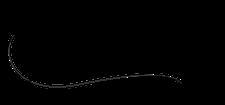 Jay Allen logo