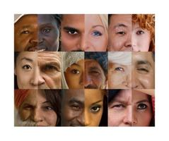 Mainstreaming the Multicultural Market