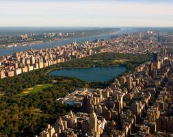 Navigate New York