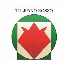 Tulipano Rosso Italia Onlus logo