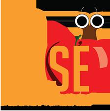 WISE Scholars Foundation logo