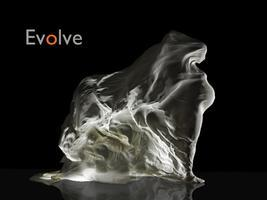 Evolve... a woman's journey