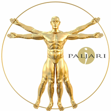 Paljari Events logo