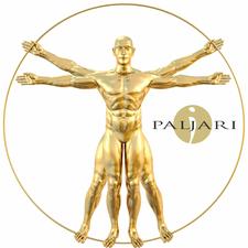 Paljari Events logo