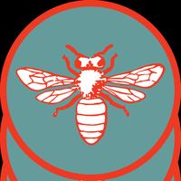 Beehive Care & Maintenance