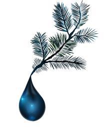 Blue Spruce Club Inc. logo