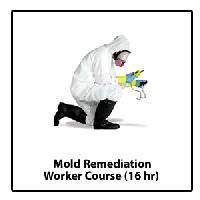 Mold Remediation Certification Course FL Call To...