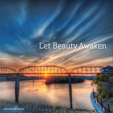 Project: Let Beauty Awaken logo