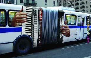 Accordion Noir Festival: Underdog Instrument Grudge...