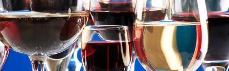 Un-WINE-d! A European Wine Tour benefiting the Platt...