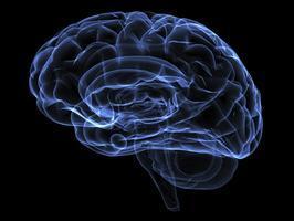Neighbor Next Door: Understanding Alzheimer's Disease