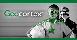 Colorado Geocortex Essentials 2013 Users Group