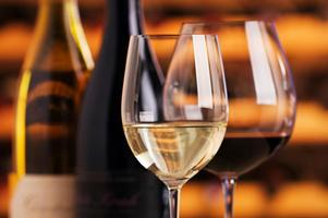 Wine Tasting Social & Networking Event