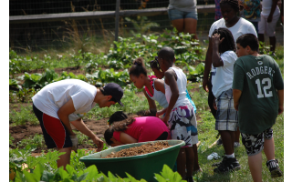 Whole Foods Market - Farm Clean Up (Kids Day of...