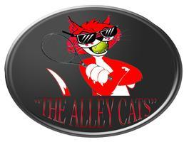 """""""ALLEY CATS!""""  We provide food & drinks for our home..."""