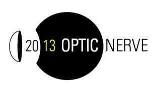 OPTIC NERVE 15