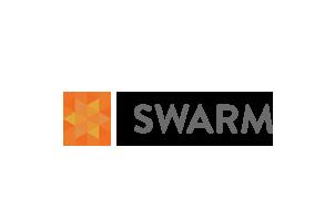 swarm conference 2013