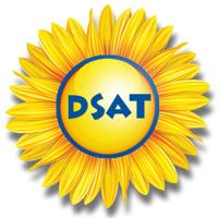 The Down Syndrome Association of Toronto (DSAT)  logo
