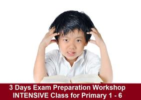 3-Days Review and Exam Workshop