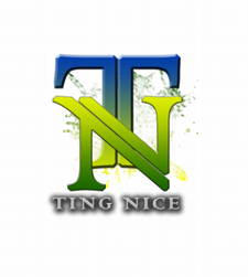 Ting Nice Promotions logo
