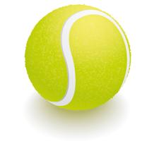 Idaho Tennis Association logo