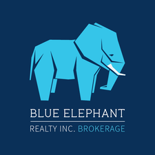 The Blue Elephant Team logo