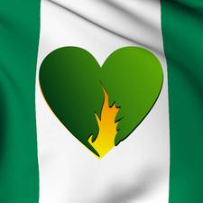 Nigeria Wildfire Mission Inc logo
