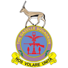 The Gazelle Squadron Display Team logo