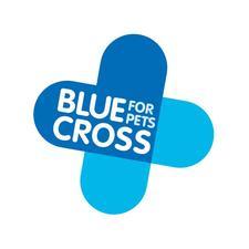 Blue Cross, Public Affairs logo