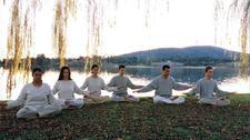 Falun Gong NSW logo