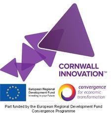 Tremough Innovation Centre logo