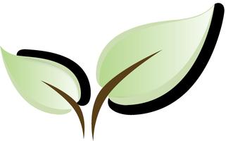 Sustainable Startups Series