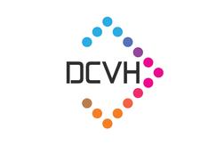 Diamond Creative Vision Hub  logo