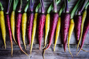 Kombucha & Fermented Foods (2 Part Series)