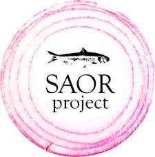 SAOR Project logo