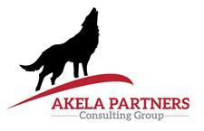 Akela Partners Consulting Group logo